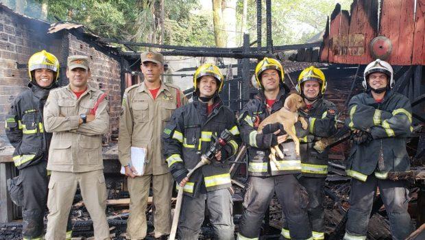 Bombeiros salvam cachorro de incêndio em madeireira no Residencial Sollar Ville