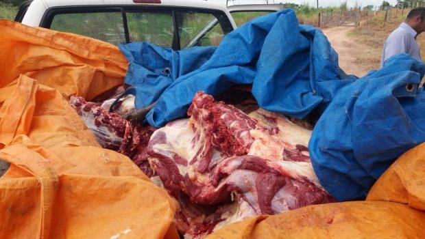 PRF apreende cerca de uma tonelada de carne imprópria para consumo em Abadiânia