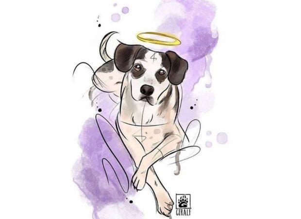 Artigo O Cachorro