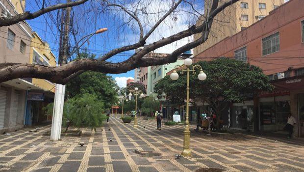 Rua do Lazer, no Centro de Goiânia, será revitalizada