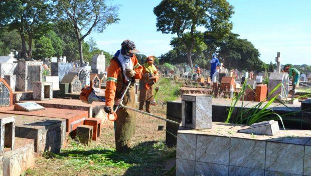 Cemitérios de Goiânia e unidades da Semas passarão por limpeza periódica a partir deste mês