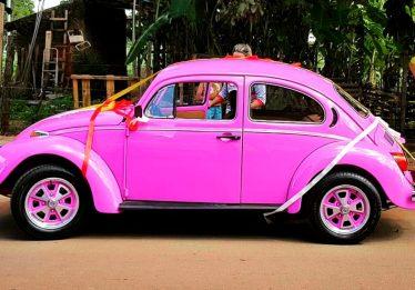 Dia Nacional do Fusca: mais que apenas um carro, uma paixão do goiano