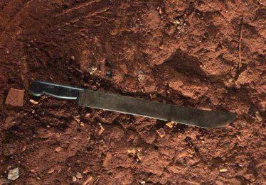 PM prende irmãos suspeitos de matar e decapitar homem encontrado enterrado no Conjunto Primavera