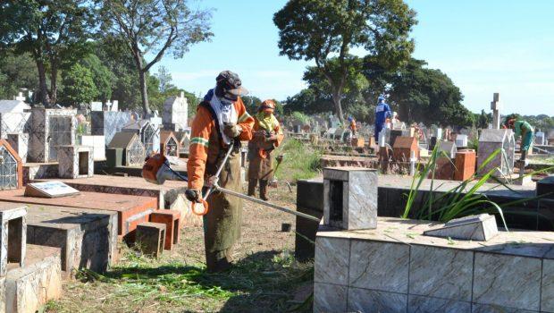 Prefeitura de Goiânia inicia força-tarefa para limpeza do Cemitério Parque