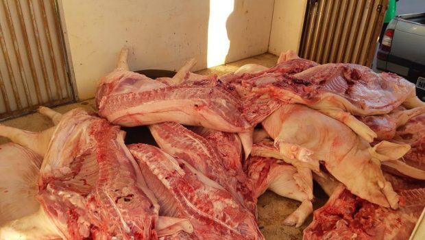 PRF apreende 700 kg de carne suína clandestina em Anápolis