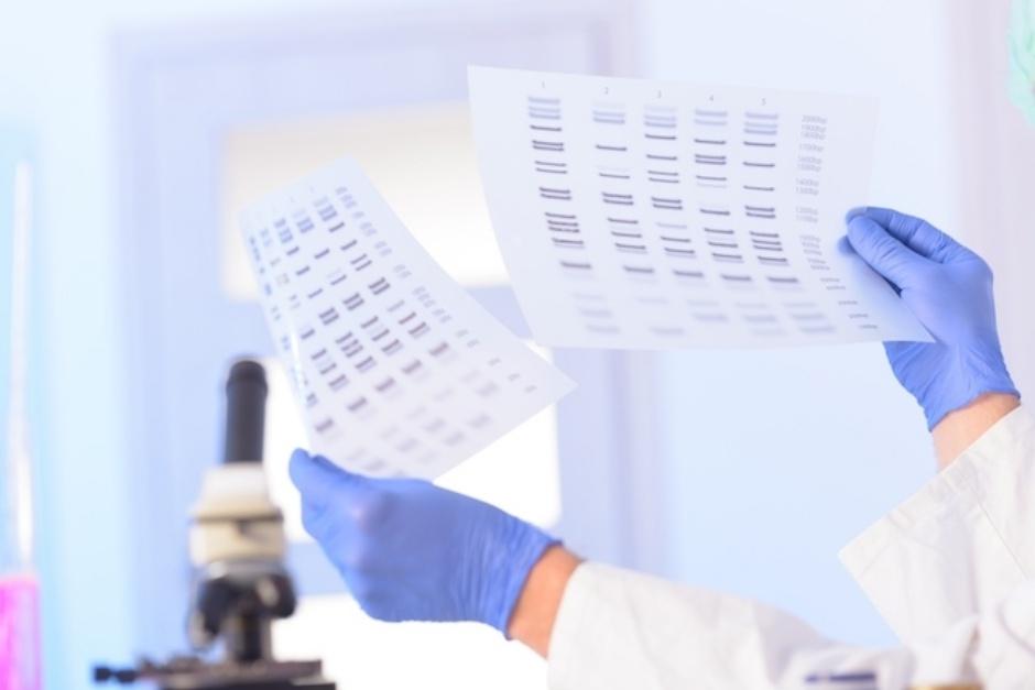 Justiça disponibiliza 1,5 mil testes de DNA gratuitos para goianos que querem ter a paternidade reconhecida