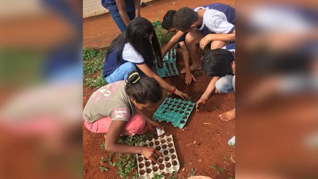 Escolas públicas goianas ganham prêmio da Fundação Oswaldo Cruz por projetos de sustentabilidade