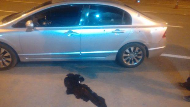 Agente penitenciário é baleado após deixar plantão de presídio em Santo Antônio do Descoberto