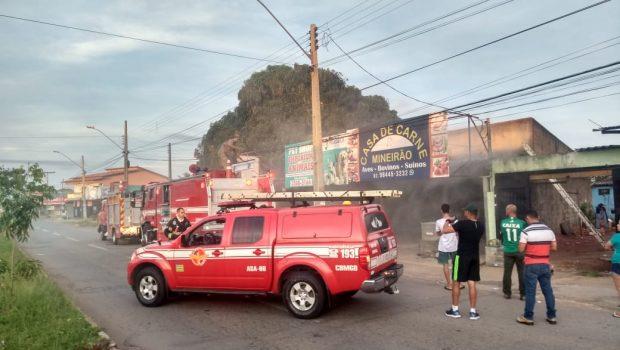Incêndio em loja de animais deixa 26 aves mortas no Jardim Itaipu, em Goiânia