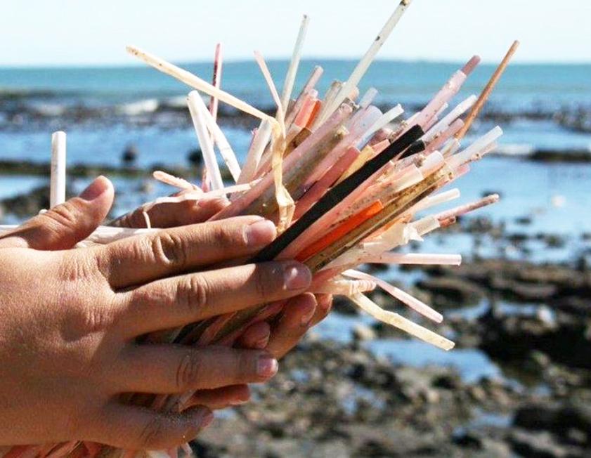 Projeto de Lei que obriga o uso de canudos biodegradáveis em Goiânia é aprovado