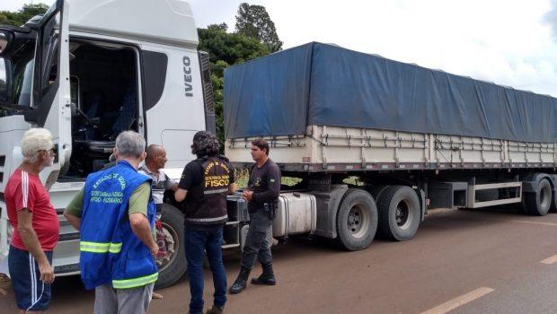 Fisco apreende mais de 261 toneladas de milho sem nota fiscal em Itaberaí