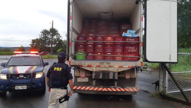 PRF apreende mais de 15 toneladas de queijo sem nota fiscal na BR-153, em Jaraguá