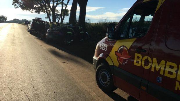 Homem morre após bater carro em árvore na GO-222, em Nerópolis