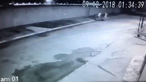 Três adolescentes são apreendidos suspeitos de espancar e matar homem em Aragarças