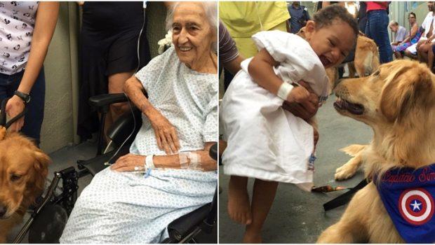 Melhor amigo do homem: visita de cães faz a alegria de pacientes no Hugo
