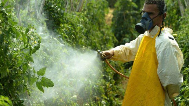 'Comendo veneno': intoxicação por agrotóxico dobra em dez anos e atinge 110 mil pessoas no Brasil