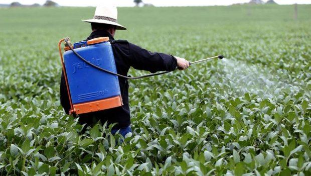 Governo libera registro de 31 novos agrotóxicos; todos são considerados perigosos ao meio ambiente