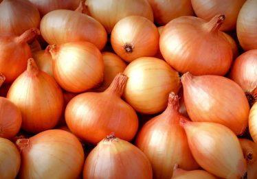 Preço da cebola abaixa em todo o país