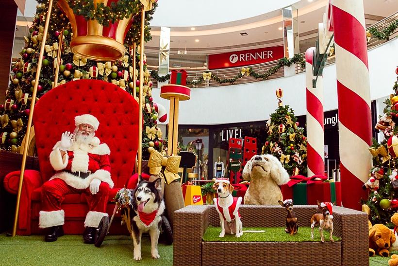 Confira alguns shoppings de Goiânia que tem a magia do natal como tradição