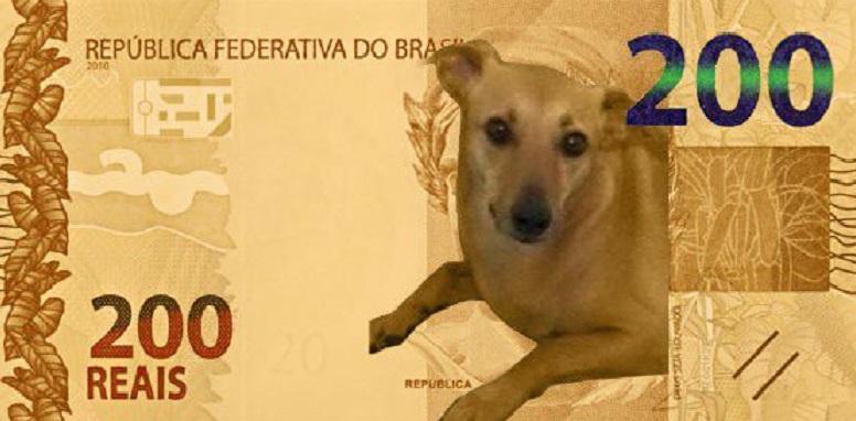 lobo-guará Nova nota de R$ 200 reais gera pedidos de mudanças e memes; confira