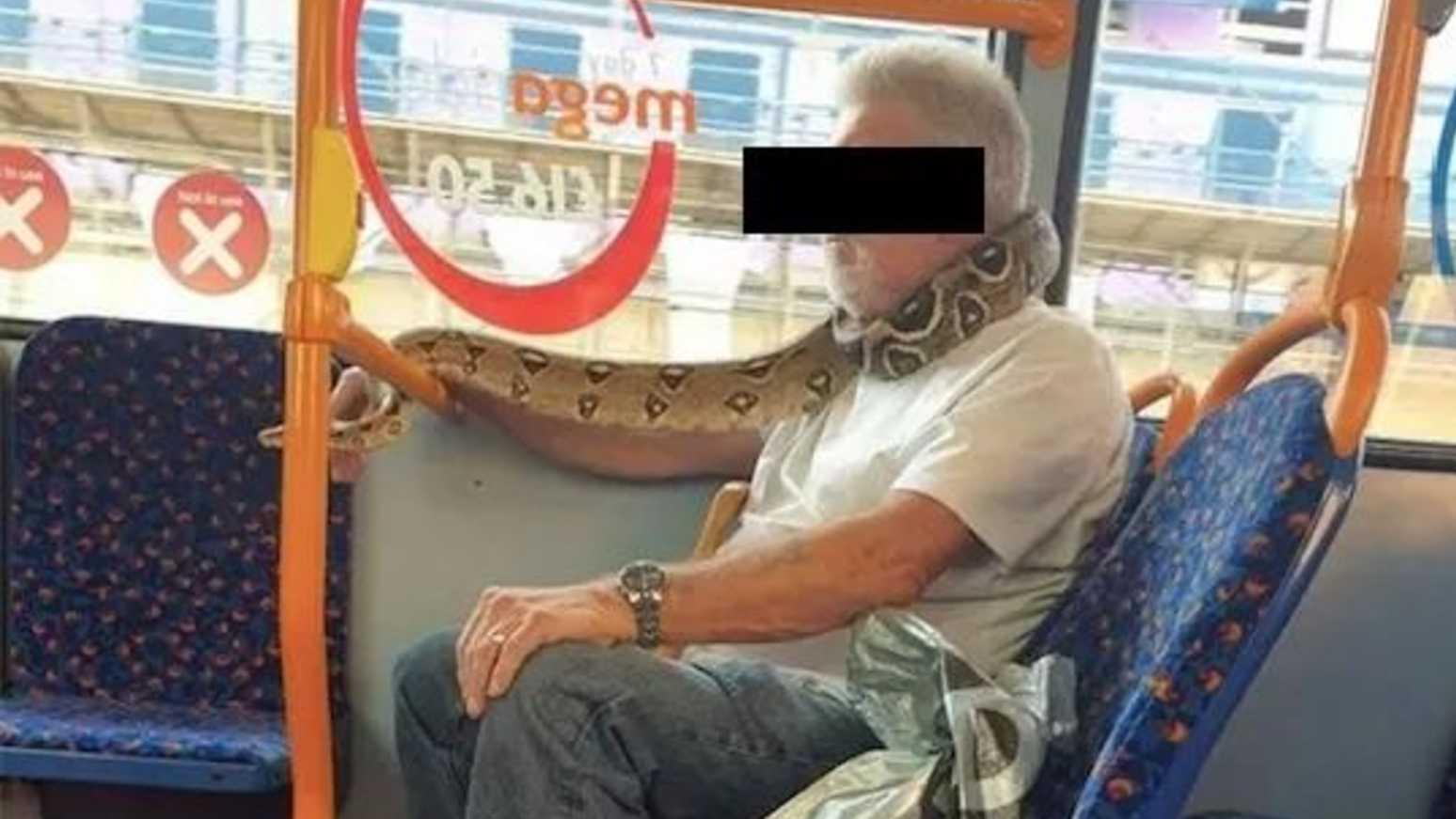 Homem usa cobra como máscara em ônibus na Inglaterra